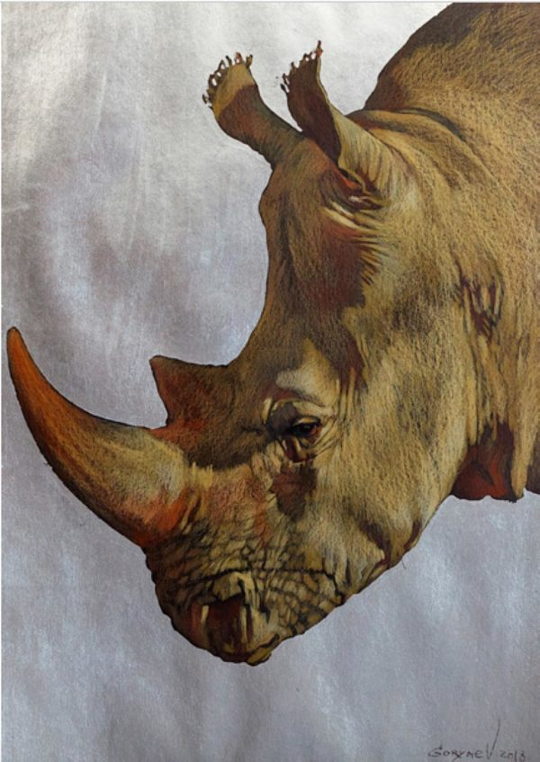 Das Bild von dem letzten weissen Nashorn auf dem silbernen Hintergrund.
